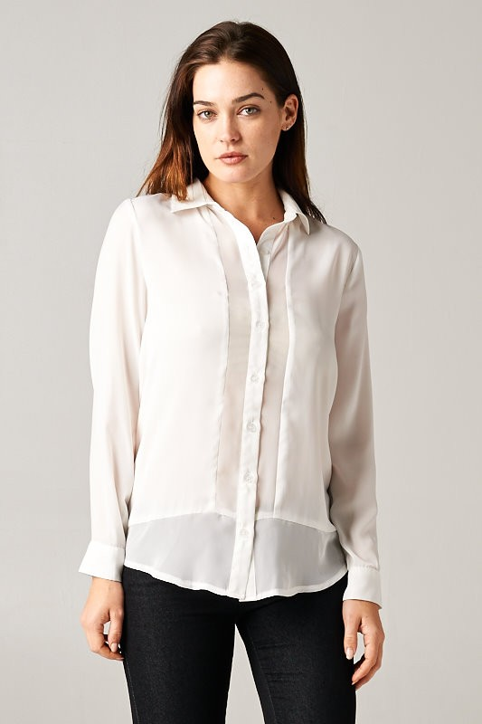 Sheer Blouse with Solid Panel - orangeshine.com