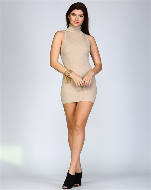 Turtle Neck Dress - orangeshine.com