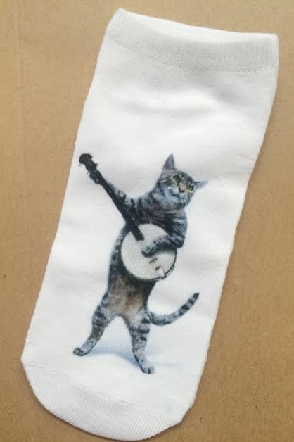 Cat Banjo sox - orangeshine.com
