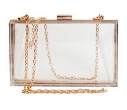 Clear Crossbody Acrylic Clutch - orangeshine.com
