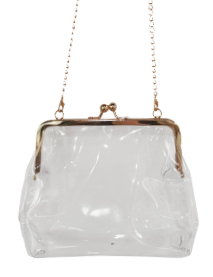 Clear Crossbody Coin Clutch - orangeshine.com