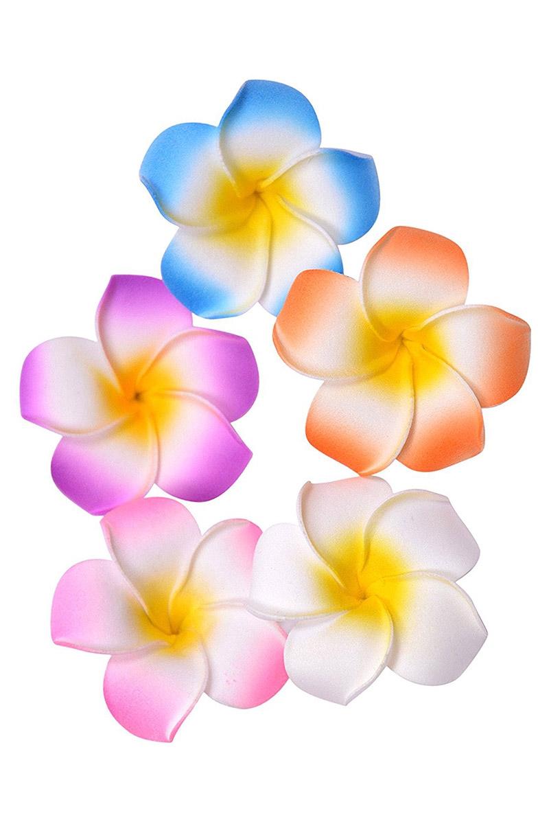 Wholesale hawaiian flowers choice image beautiful exotic flowers wholesale hawaiian flowers images flower wallpaper hd izmirmasajfo