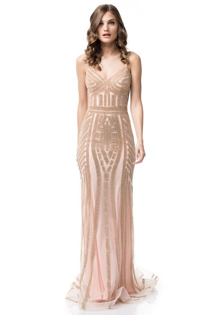 V-Neck Long Evening Dress - orangeshine.com