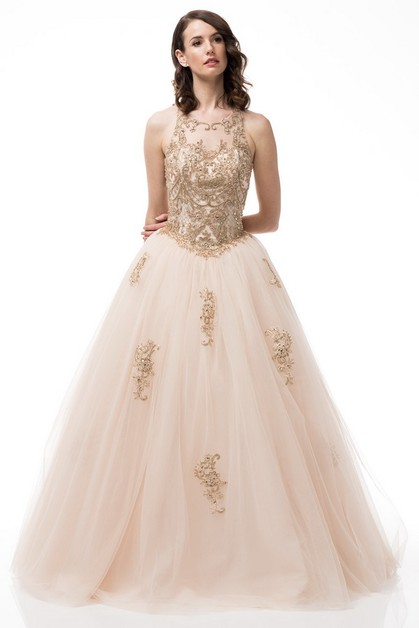 Sleeveless Ball Gown - orangeshine.com