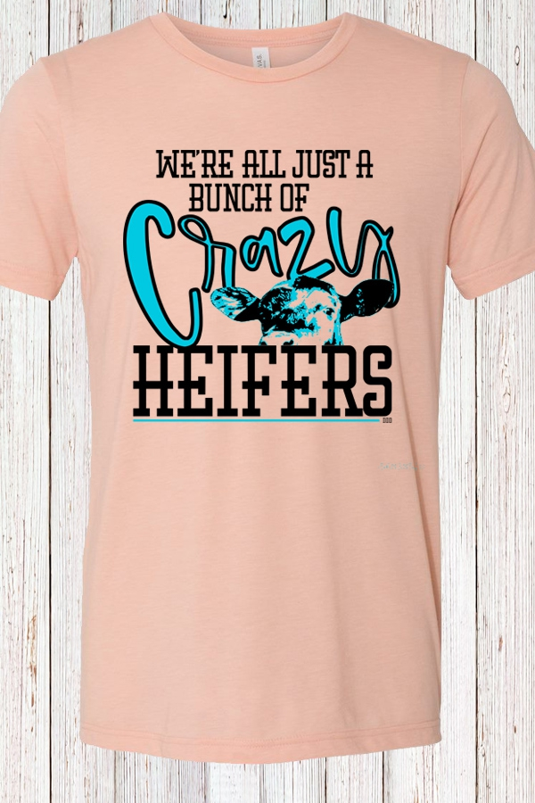 Crazy Heifers Prism Peach Tee - orangeshine.com