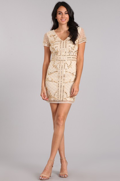 Sequin Embroidered Mini dress - orangeshine.com
