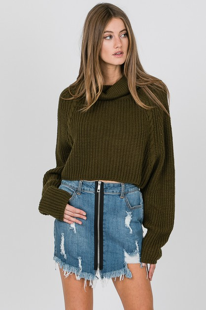 Turtle Neck Crop Sweater - orangeshine.com