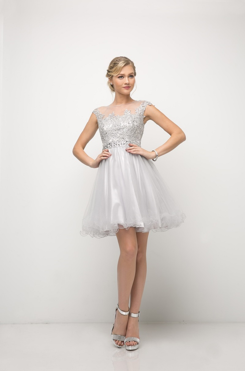 Beaded Lace Bodice Tulle Short Dress - orangeshine.com