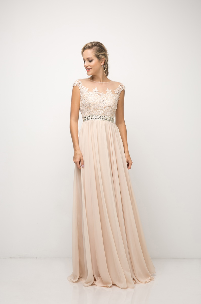 Lace Chiffon Empire Waist Dress - orangeshine.com
