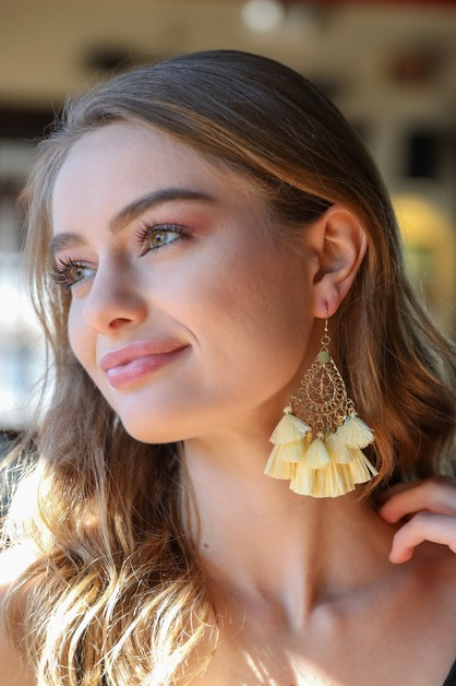 Teardrop Tassel Earrings - orangeshine.com