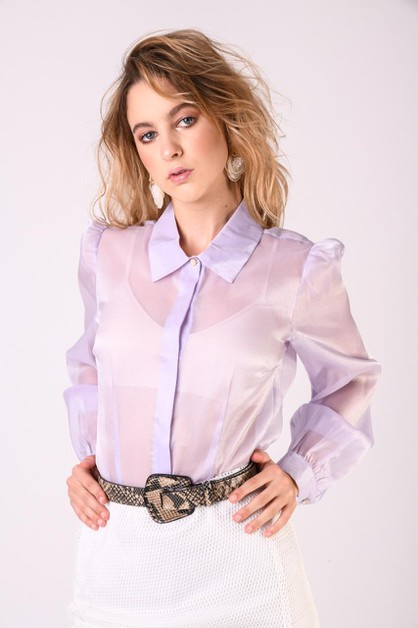 Chiffon Long Sleeves Blouse - orangeshine.com