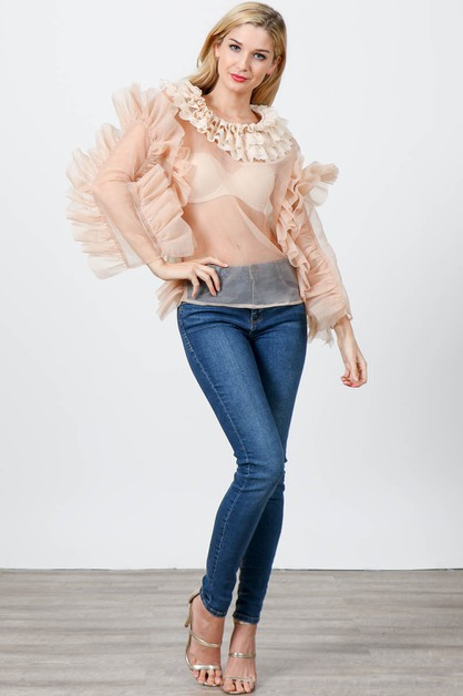 Sheer Long Sleeve Organza Top  - orangeshine.com