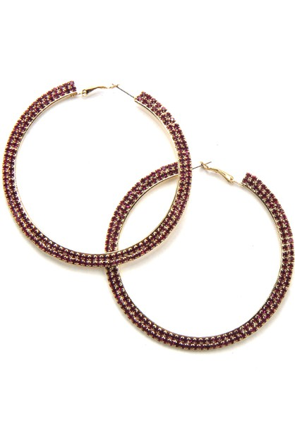 Fashion Hoop Earrings - orangeshine.com