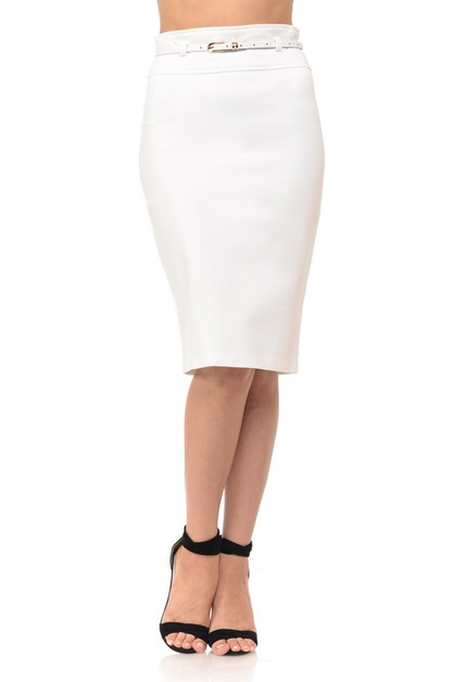 Knee Length Work Pencil Skirt - orangeshine.com