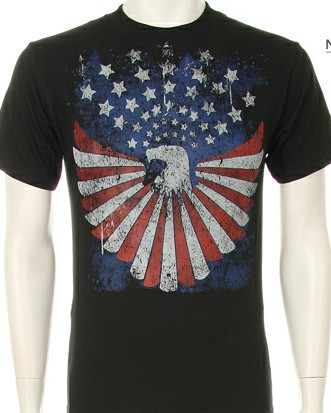 AMERICAN EAGLE WITH AMERICAN FLAG - orangeshine.com
