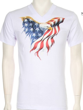 AMERICAN FLAG EAGLE - orangeshine.com