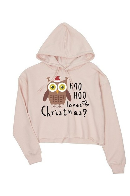 JCH021XX Hoo Loves Christmas Owl Cro - orangeshine.com
