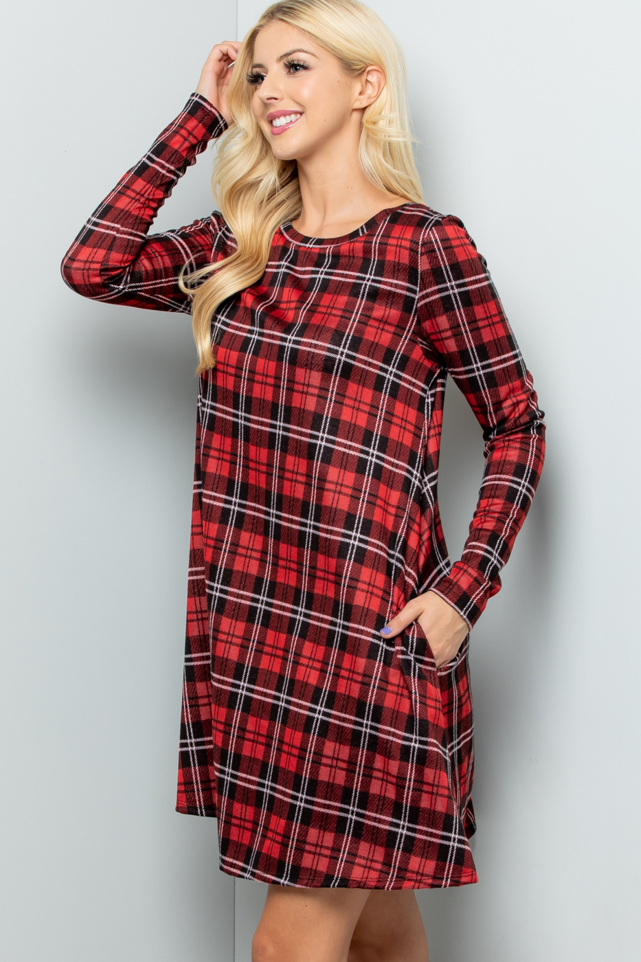Plus Size Buffalo Plaid Print Dress  - orangeshine.com