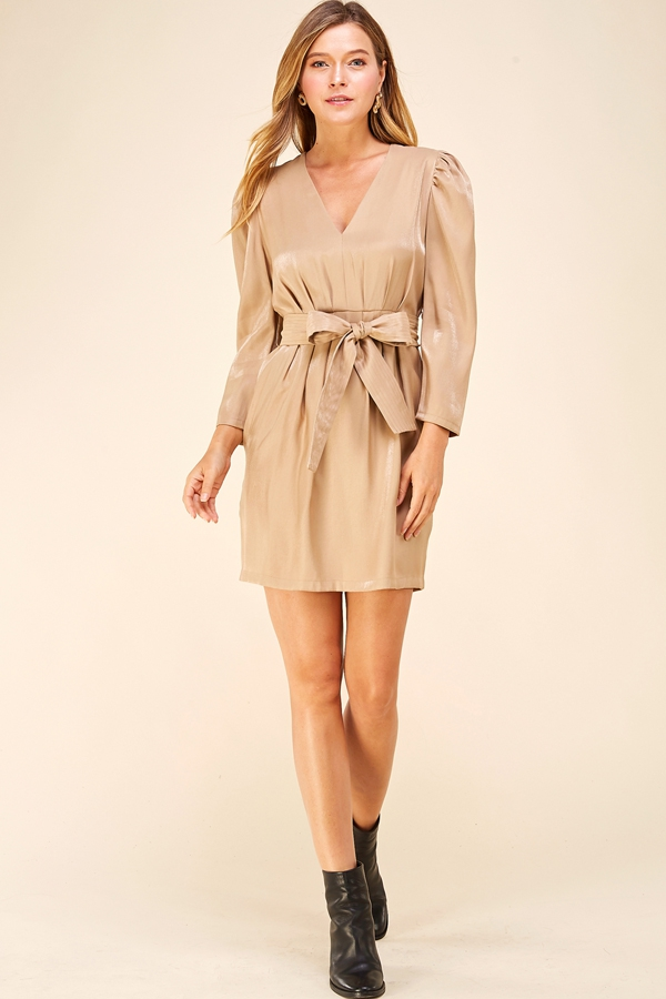 V-NECK SHINY LONG SLEEVE DRESS - orangeshine.com