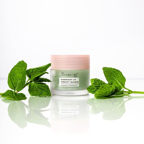 Overnight Lip Therapy Masque Plumpin - orangeshine.com