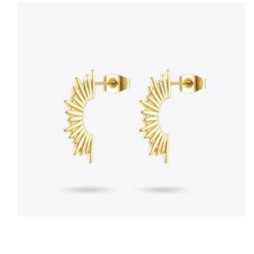 Spiky Earrings - orangeshine.com
