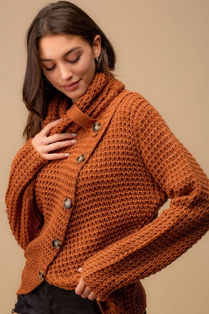 TURTLE NECK DIAGONAL BUTTON  SWEATER - orangeshine.com
