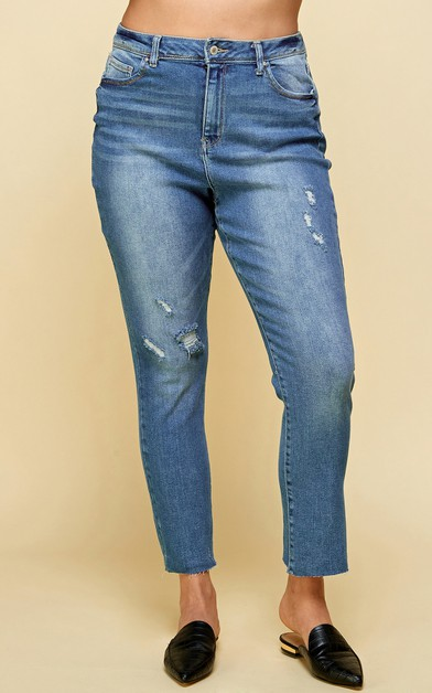 Stretchy Skinny Jeans Ripped Plus - orangeshine.com