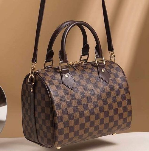 Popular checkered speedy bag - orangeshine.com