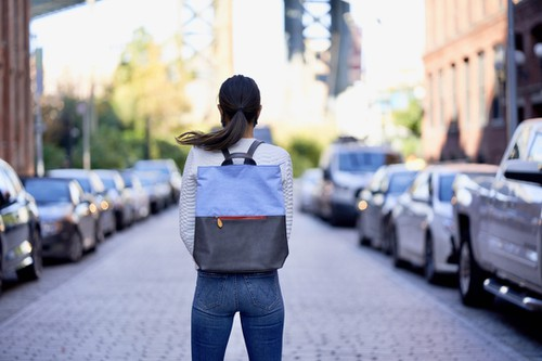Backpack with Luggage Sleeve - orangeshine.com