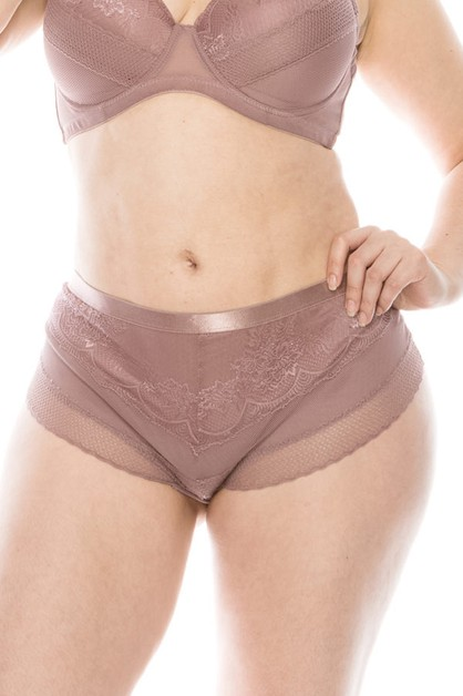 Pluse Size Mesh And Lace Hipster - orangeshine.com