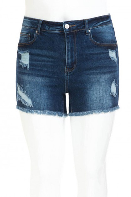 Denim Ripped Shorts Plus Size - orangeshine.com