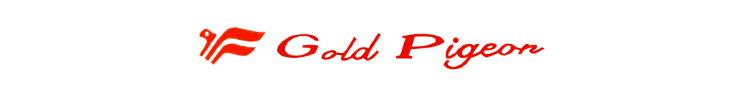 GOLD PIGEON SHOES - orangeshine.com