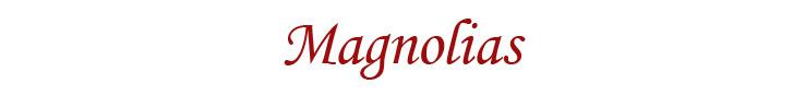 MAGNOLIAS - orangeshine.com
